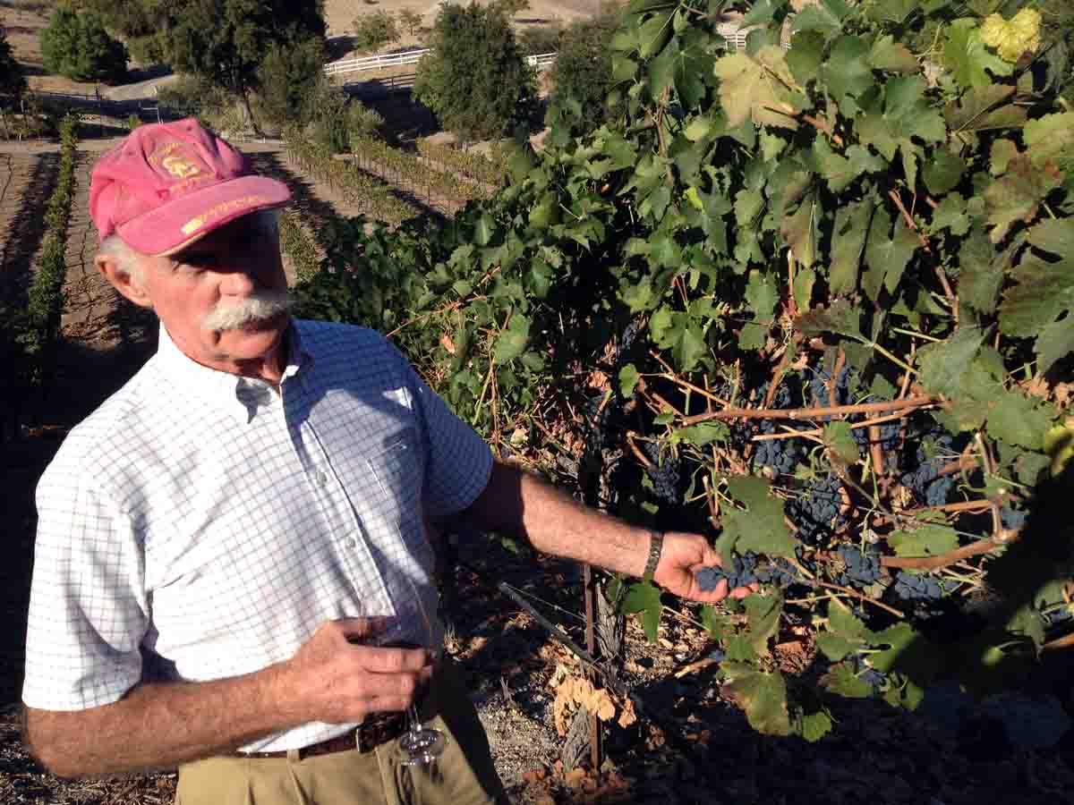Westside Wine Tasting Paso Robles